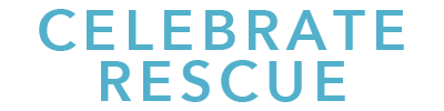 TY Sponsor Level Celebrate RescueII